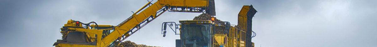 Farm equipment harvesting sugar beets and loading them into